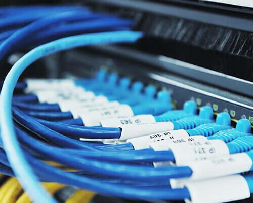 leist-netzwerk2